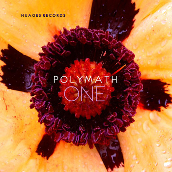 Polymath - One