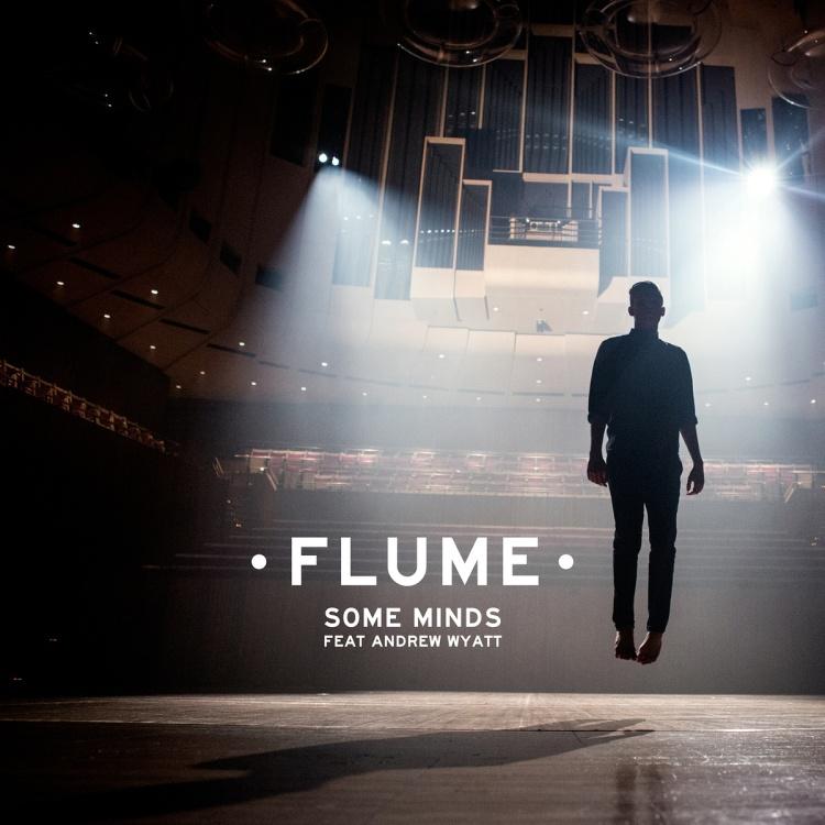 Flume Some Minds